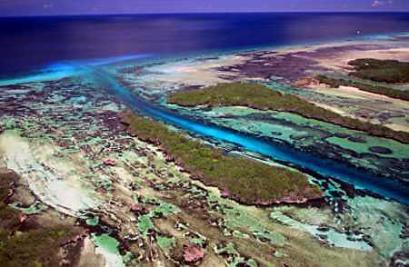 印度洋最大的珊瑚岛——奥尔达布拉岛