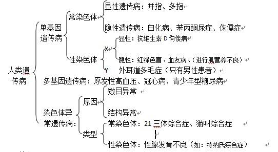 第三章认识电路的知识结构图