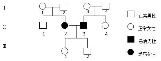【12天津】6.果蝇的红眼基因(R)对白眼基因(r)为显性,位于X染色体上;长翅基因(B)对残翅基因(b)为显性,位于常染色体上。现有一只红眼长翅果蝇与一只白眼长翅果蝇交配,F1代的雄果蝇中约有1/8为白眼残翅。下列叙述错误的是 A.亲本雌果蝇的基因型为BbXRXr B.亲本产生的配子中含Xr的配子占1/2 C.