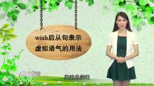 句法 虚拟语气 第四讲 与wish, would rather相关的虚拟语气